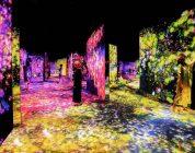 花与人的森林:迷失、沉浸与重生 - 蜂巢结构 / Forest of Flowers and People: Lost, Immersed and Reborn - Honeycomb Structure